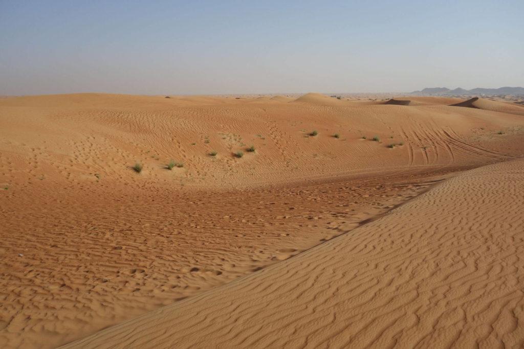 Spojené arabské emiráty - poušť