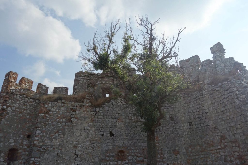 Pálava hrad