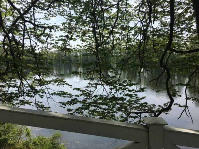 Kozel rybník