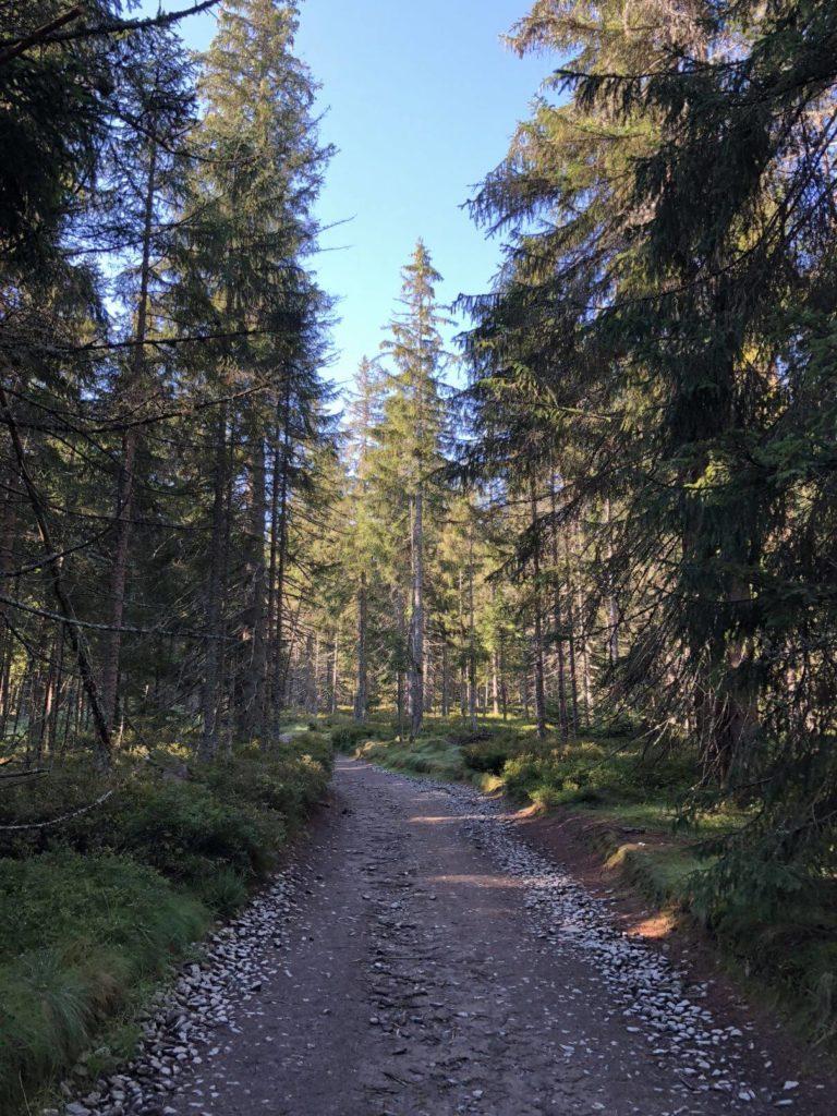 Cestou na Poledník