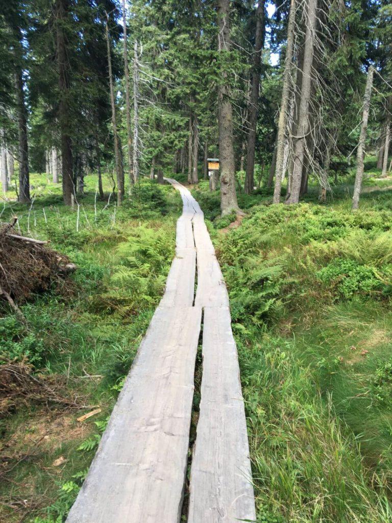 Dřevěná cestička Černá hora