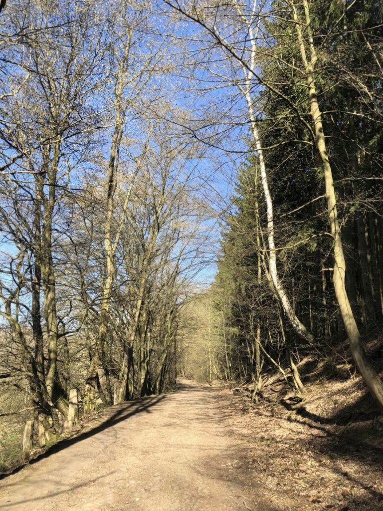 Cesta do kopce
