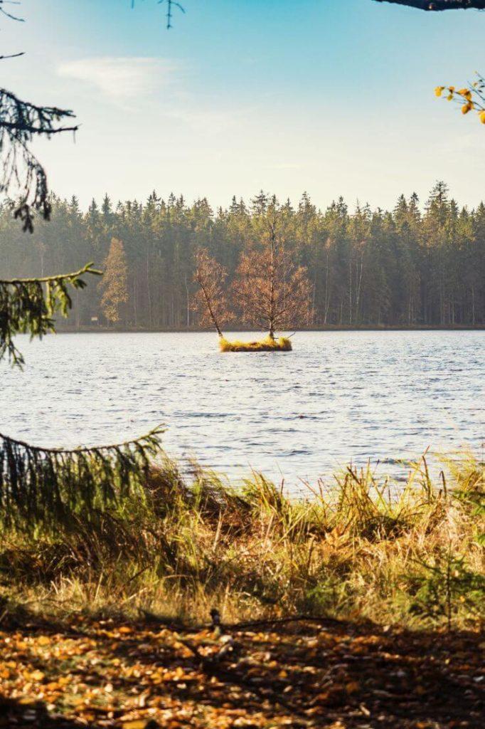 Kladský rybník II