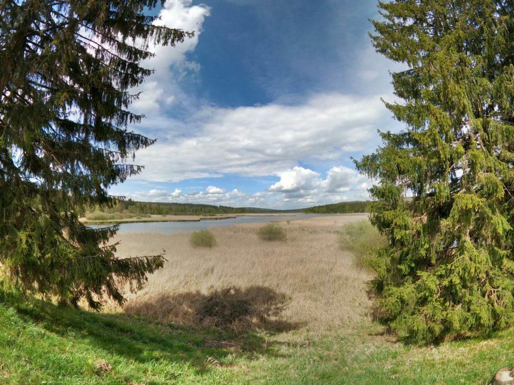 Dolejší Padrťský rybníku