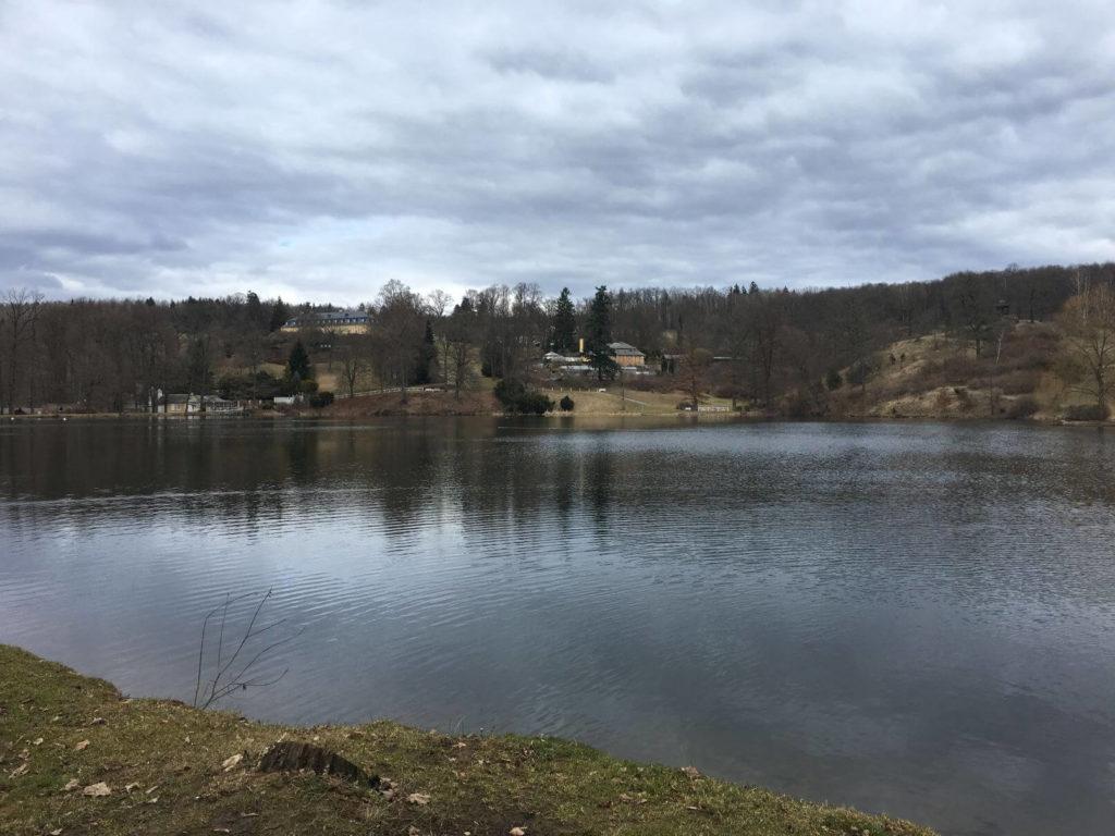 Lopatský rybník Kozel