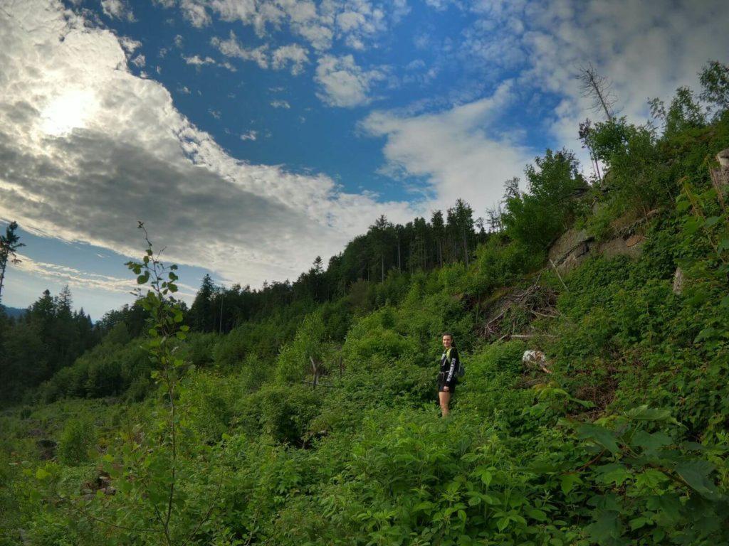 Cesta na horu Vysoká