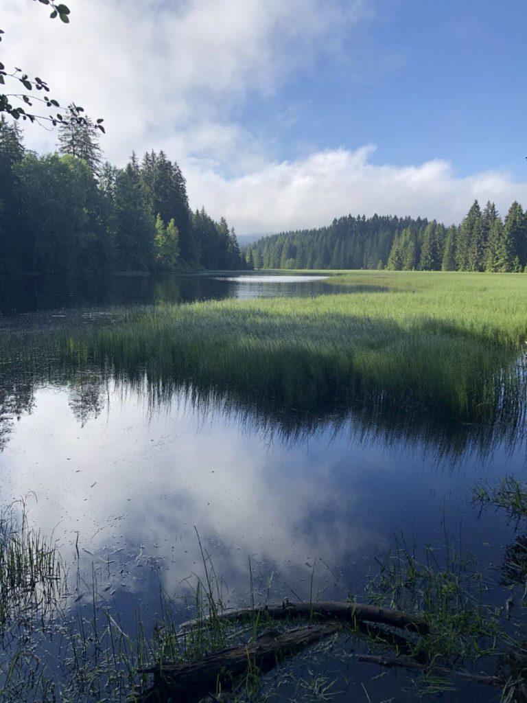 Huťský rybník