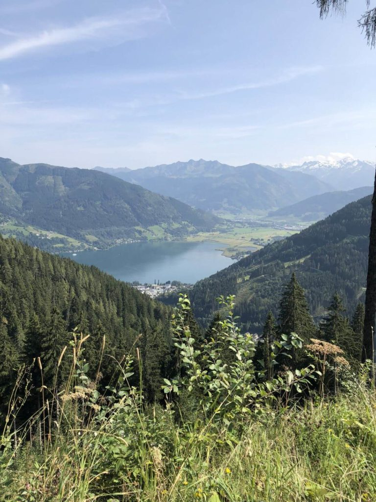 Výhled na Zell am See