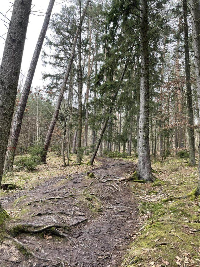 Cesta na Lopatu