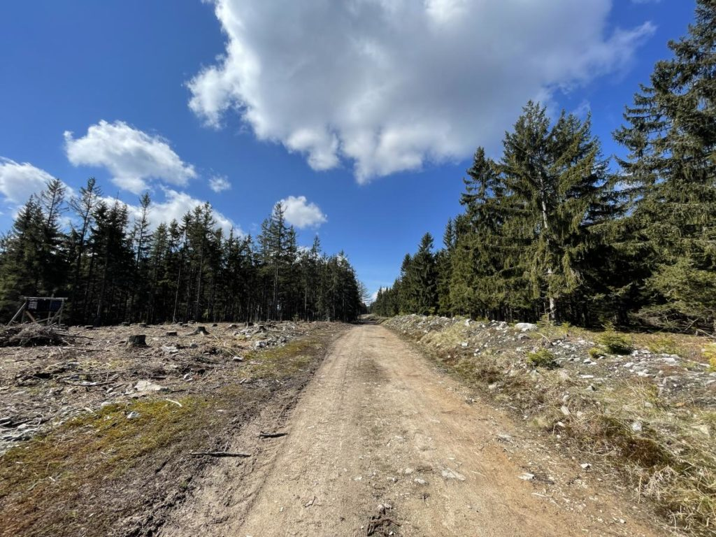 Cesta Brdy