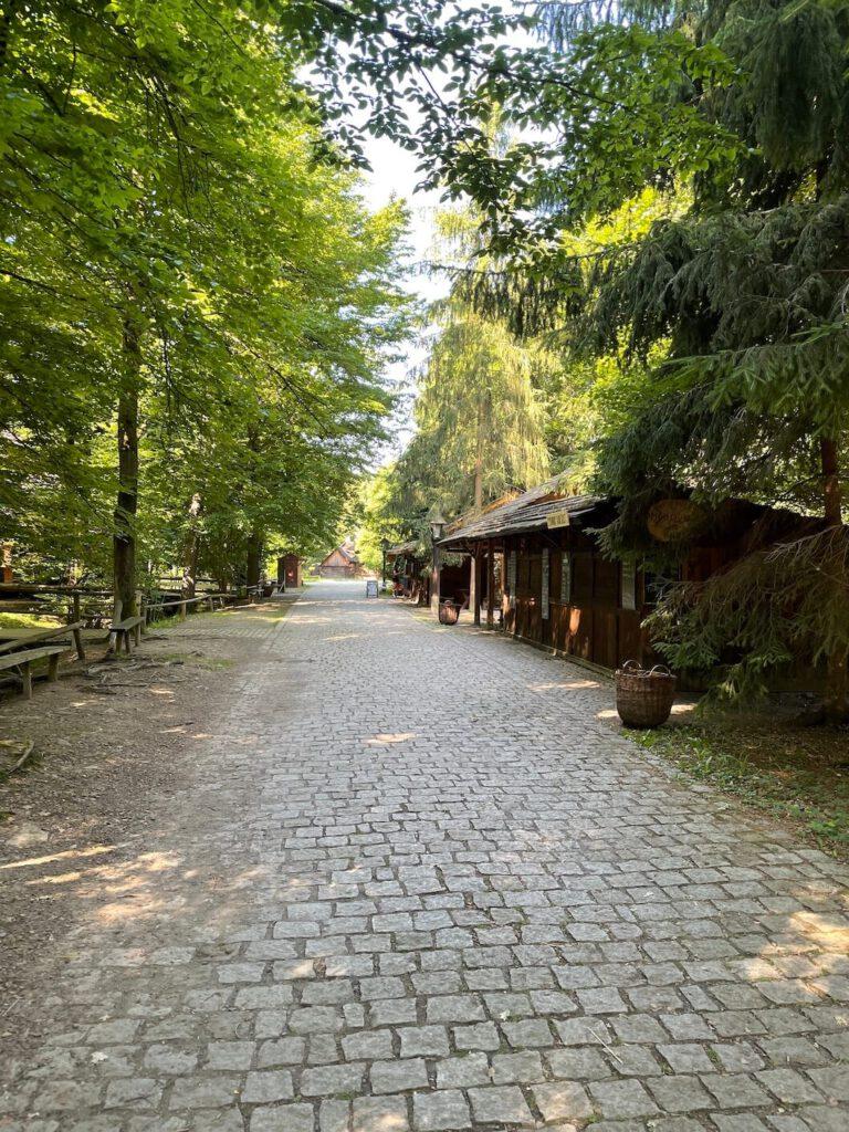 V dřevěném městečku